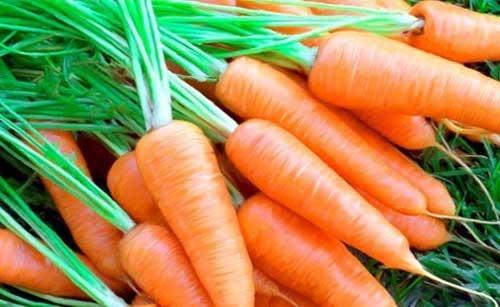 Công dụng tuyệt vời của cà rốt đối với sức khỏe con người