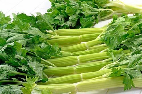 Bí quyết giúp hạ huyết áp bằng rau cần tây