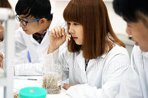 Đào tạo Cao đẳng Dược chú trọng kĩ năng nghề nghiệp