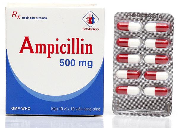 Tìm hiểu công dụng và liều dùng thuốc Ampicillin 500mg