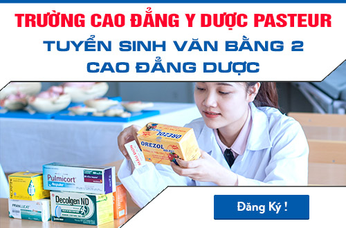 van-bang-2-cao-dang-duoc