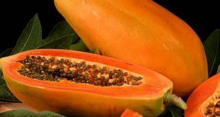 Không ăn đu đủ nguyên tắc dinh dưỡng cho người bệnh suy thận